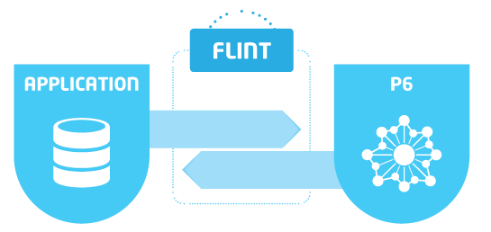 Software oplossingen - Flint